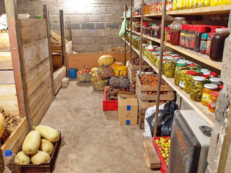 уборка +и хранение урожая