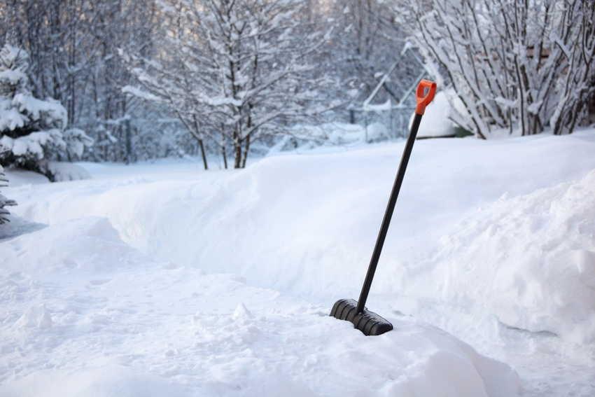 задержание снега+фото