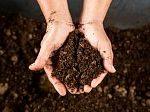 сад+огород+весна+почва+удобрения