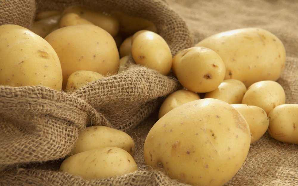 весна+огород+картофель+вырастить+фото