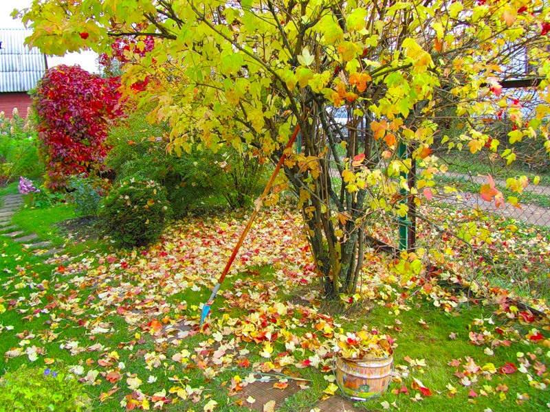 сезонные работы в октябре