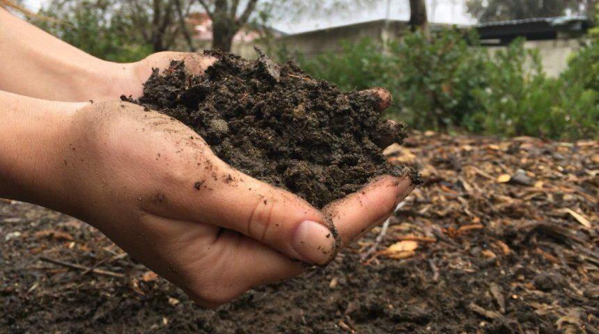 активное органическое удобрение