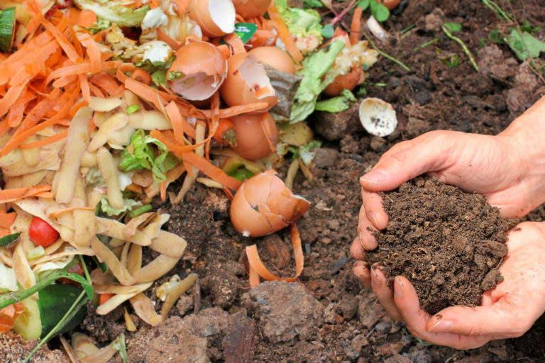 органические удобрения +своими руками