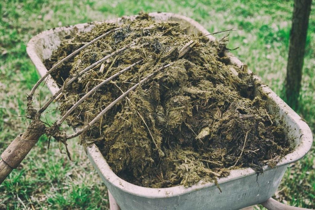 характеристика органических удобрений