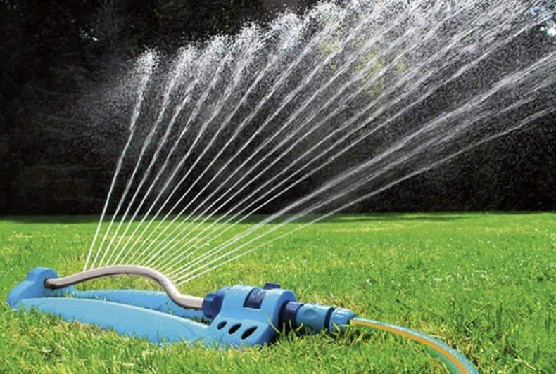 +как поливать газон