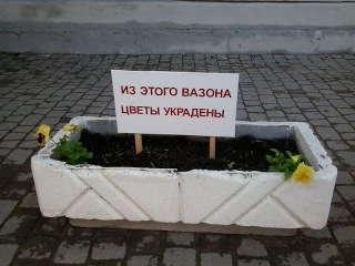 воровство цветов+фото
