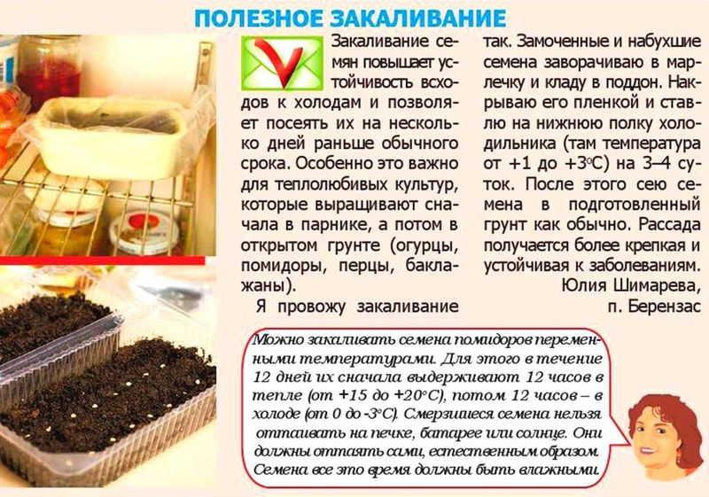 способы подготовки семян