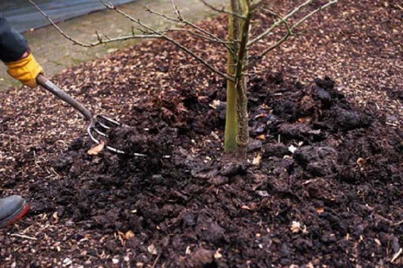 обработка рыхление почвы