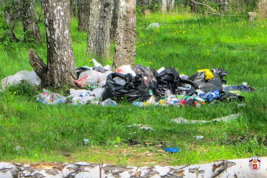 мусор +на дачном участке