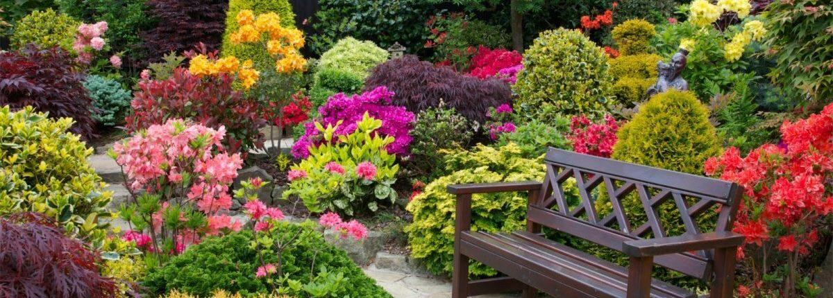 фото декоративных садов