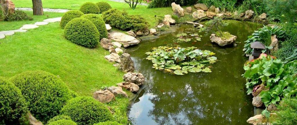 садовый пруд +своими руками