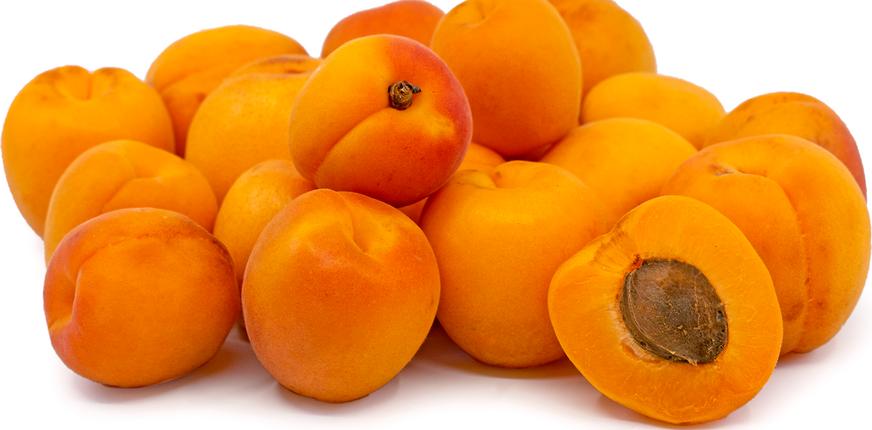 априум гибрид абрикоса