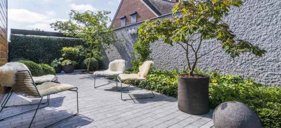 маленький городской сад
